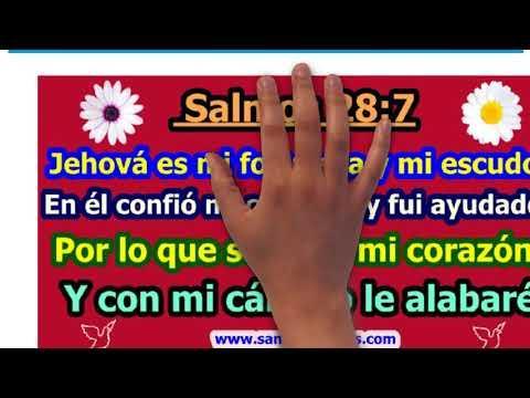 Versículos de la Biblia sobre la Adoración / Vídeo