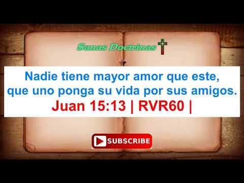 Versículos de la Biblia sobre la Amistad - Video
