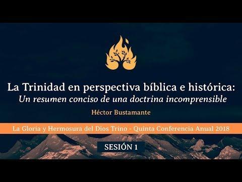 La Trinidad en perspectiva bíblica e histórica: Un resumen conciso de una doctrina incomprensible