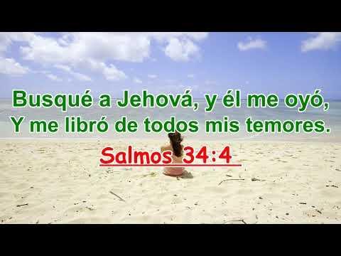 Versículos biblicos sobre la Búsqueda