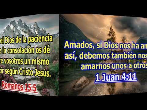 VÍDEO - Versículos Bíblicos sobre la Comunidad