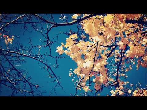 Devocional - 16 de Marzo -  Dios de paz esta con nosotros! - Charles Spurgeon