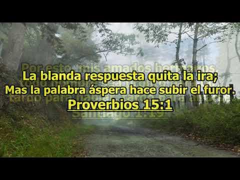 Versículos bíblicos sobre la ira