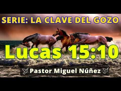 LA GRATITUD COMO FUENTE DE GOZO - Predicaciones estudios bíblicos - Pastor Miguel Núñez