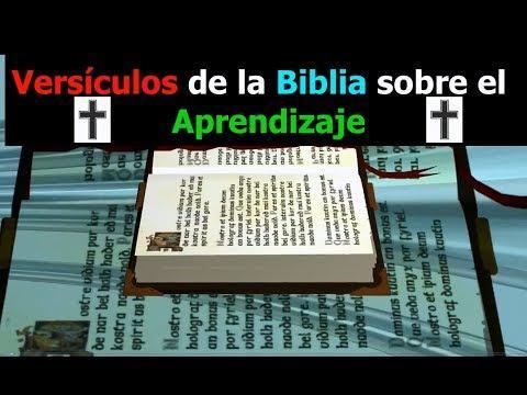Versículos de la Biblia sobre el Aprendizaje