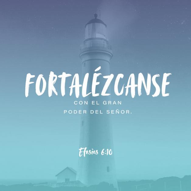 Fortaleceos en el Señor (Efesios 6 :10)