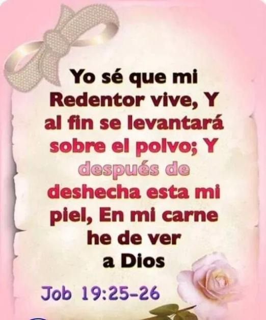 Yo sé que mi Redentor vive - Job 19:25-26