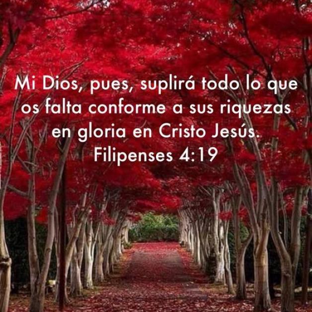 Mi Dios, pues, suplirá todo lo que os falta (Filipenses 4:19)