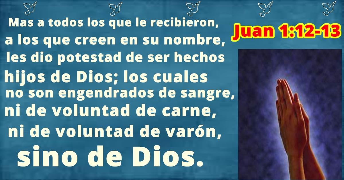 Hechos hijos de Dios - Juan 1:12-13