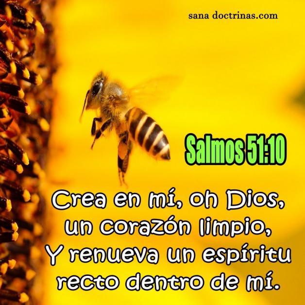 Renueva un espíritu recto dentro de mí - Salmos 51:10