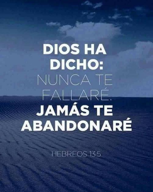No te desampararé, ni te dejaré; (Hebreos 13:5)