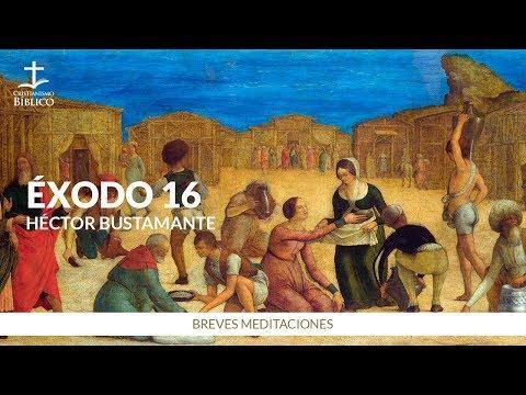 Héctor Bustamante - Breve meditación de Éxodo 16