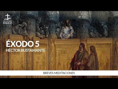 Héctor Bustamante - Breve meditación de Éxodo 5