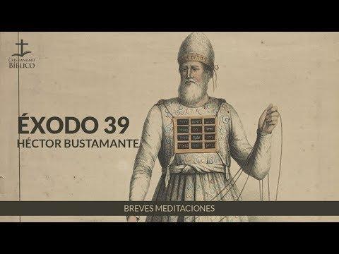 Héctor Bustamante - Breve meditación de Éxodo 39