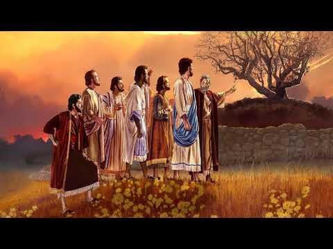 Predica La maldición de una religión sin frutos - Sugel Michelen