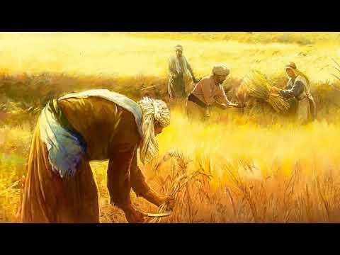 Predica - Español - Toda la Gente Ha de Trabajar para Jesús - Charles Spurgeon