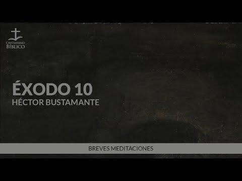 Héctor Bustamante - Breve meditación de Éxodo 10