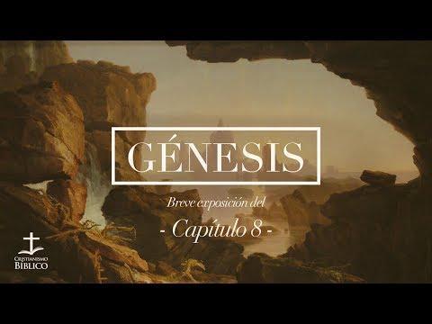 Héctor Bustamante - Breve exposición de Génesis 8