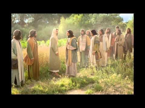 Cristo Y Sus Colaboradores- Charles H Spurgeon (Español)