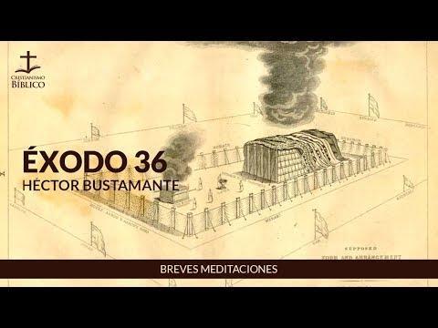 Héctor Bustamante - Breve meditación de Éxodo 36