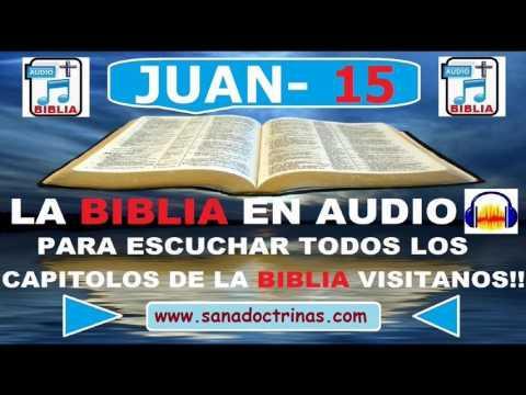 Evangelio Según JUAN - Biblia En Audio - Capitulo 15