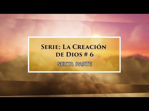 """Dr. Armando Alducin - """"Orígenes del Universo"""" # 6 Serie """"La Creación de Dios"""""""