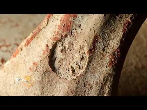 Nuevas pruebas de la destrucción de Jerusalén a manos de los babilonios.