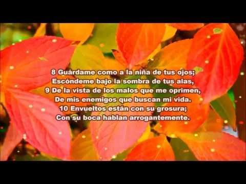 Salmos 17