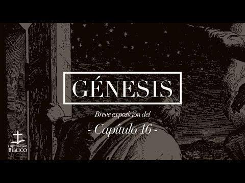 Héctor Bustamante - Breve exposición de Génesis 16