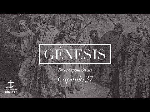 Héctor Bustamante / Breve exposición de Génesis 37