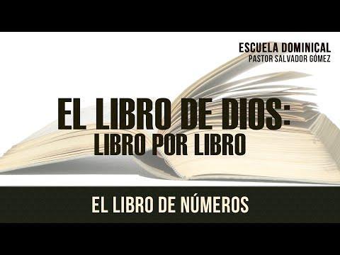 Salvador Gómez Dickson - El Libro De Dios Libro X Libro -4: Numeros