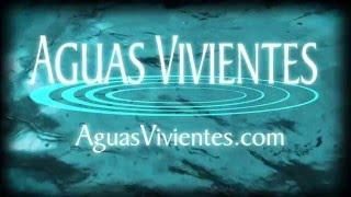 Academia Los Pasos del Maestro - Chile