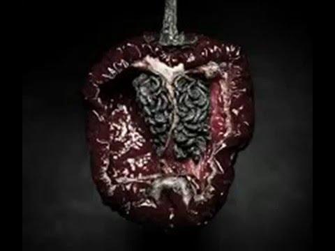 Sugel Michelen - El Corazón Del Problema