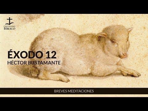 Héctor Bustamante - Breve meditación de Éxodo 12