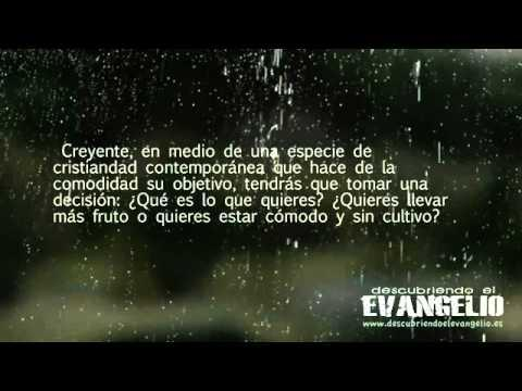 La Vid Y Los Pampanos - Paul Washer