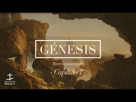 Héctor Bustamante - Breve exposición de Génesis 7