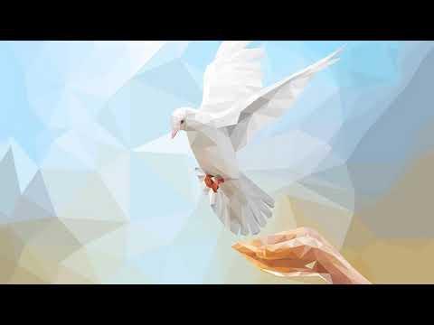 Nuestra Urgente Necesidad del Espíritu Santo - Charles Spurgeon - Predica - Español