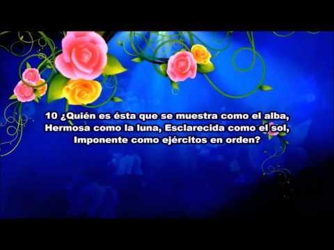 Cantar De Los Cantares-  6
