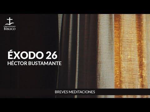 Héctor Bustamante - Breve meditación de Éxodo 26