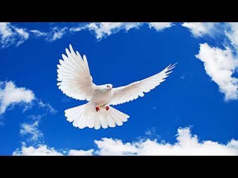 Predica-Los dones espirituales   Parte 1 - Chuy Olivares