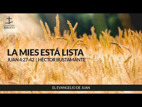 Héctor Bustamante - La mies está lista ( Juan 4:27-42 )