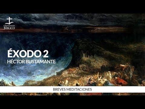 Héctor Bustamante - Breve meditación de Éxodo 2