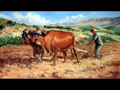 Colaboradores en la Labranza. - Charles H Spurgeon