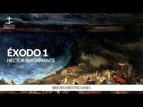 Héctor Bustamante - Breve meditación de Éxodo 1