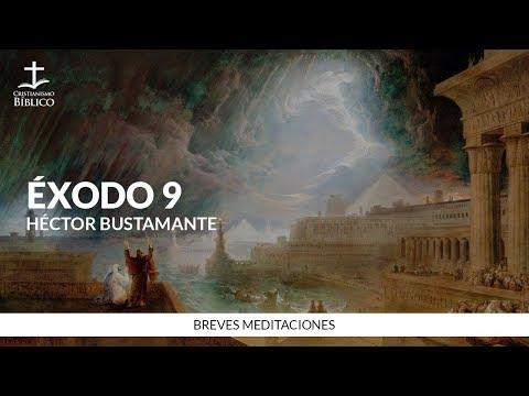 Héctor Bustamante - Breve meditación de Éxodo 9