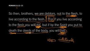 Romans 8:12–13 // Sin Will Kill You